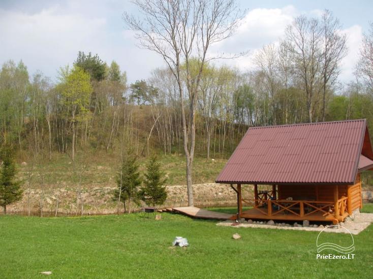 Усадьба «Owl house» в Утенском районе, Литва - 2