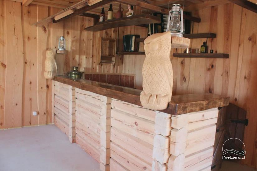 Усадьба «Owl house» в Утенском районе, Литва - 11