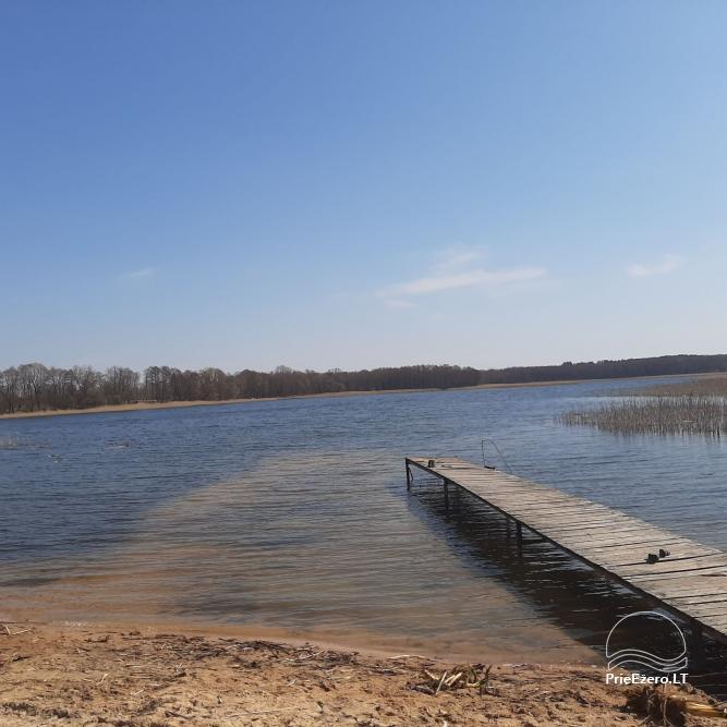 Countryside homestead near Zapsis lake in Lazdijai region, in Lithuania - 5