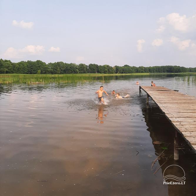Countryside homestead near Zapsis lake in Lazdijai region, in Lithuania - 6
