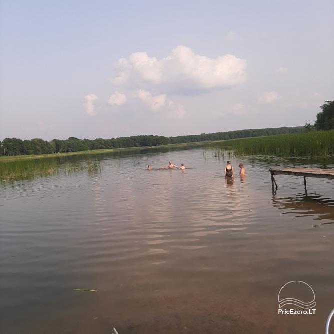 Countryside homestead near Zapsis lake in Lazdijai region, in Lithuania - 7