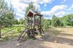 Camping GRIKUTIS with sauna, volleyball and basketball courts, hammocks - 5