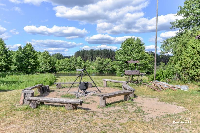 Camping GRIKUTIS with sauna, volleyball and basketball courts, hammocks - 6