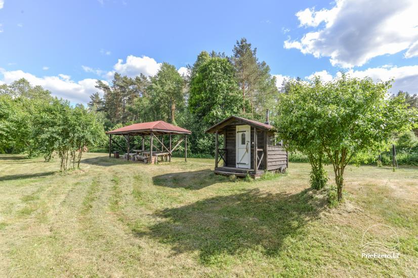 Camping GRIKUTIS with sauna, volleyball and basketball courts, hammocks - 1