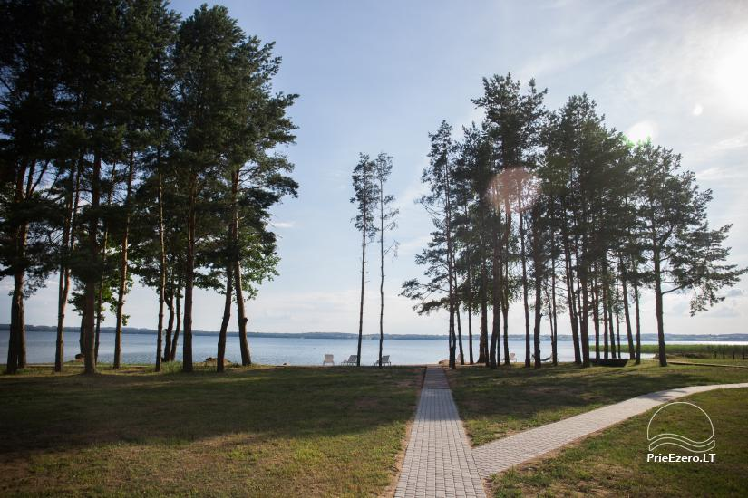 Bungalows for family recreation at Dusios Lake in Lazdijai district, Lithuania - 45