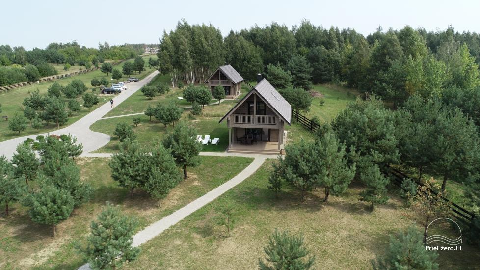 Bungalows for family recreation at Dusios Lake in Lazdijai district, Lithuania - 6