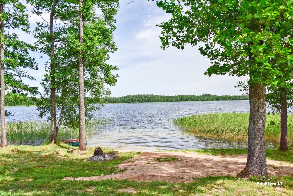 Homestead by the lake Avilys in Zarasai district, Lithuania - 45
