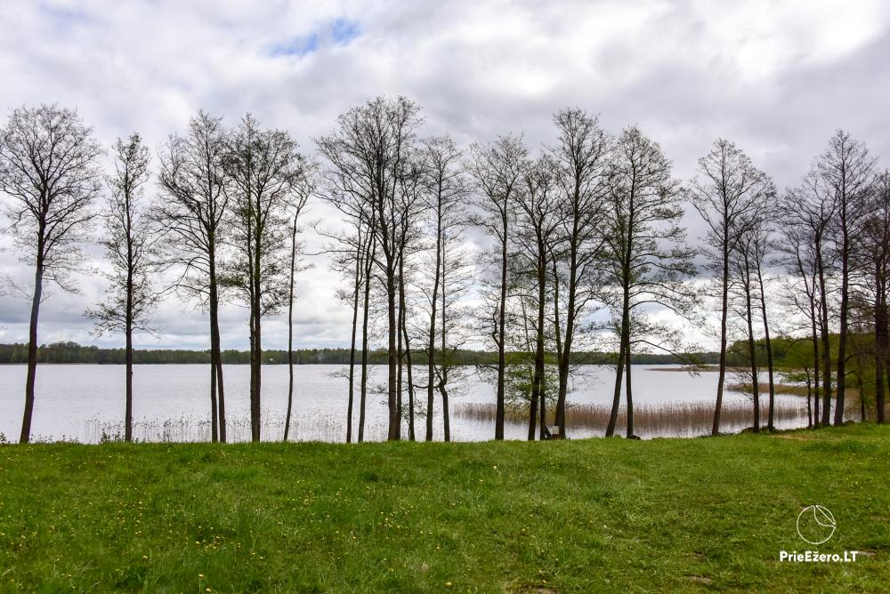 Homestead by the lake Avilys in Zarasai district, Lithuania - 37