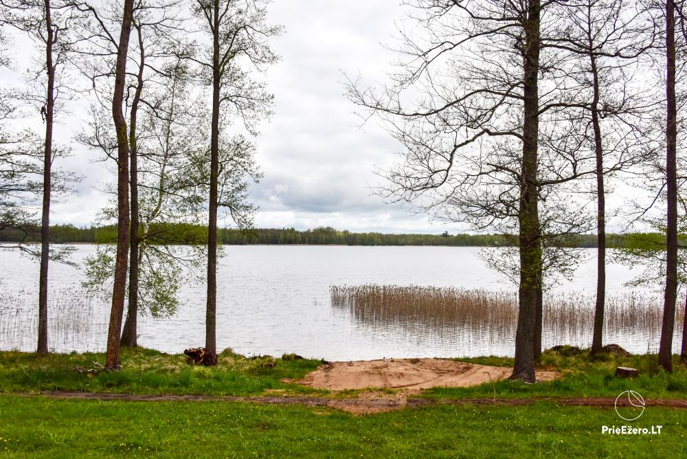 Homestead by the lake Avilys in Zarasai district, Lithuania - 36