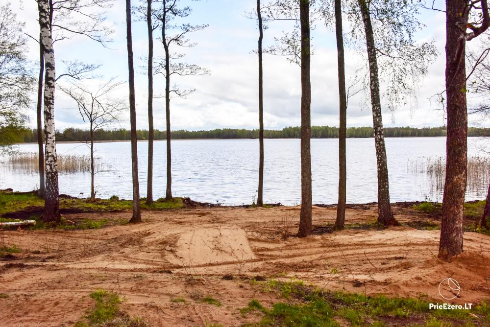 Homestead by the lake Avilys in Zarasai district, Lithuania - 34