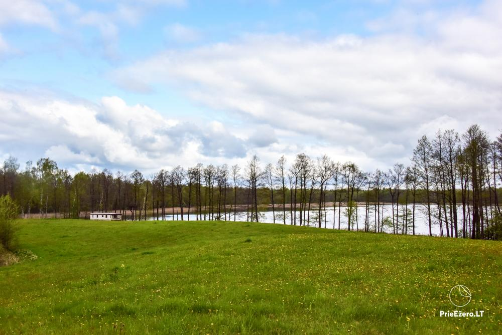 Homestead by the lake Avilys in Zarasai district, Lithuania - 33