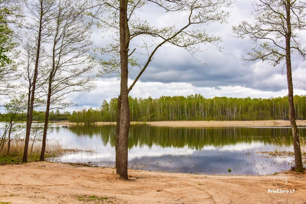 Homestead by the lake Avilys in Zarasai district, Lithuania - 46