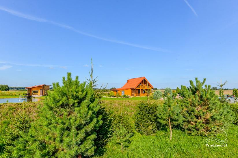 Homestead with sauna in Kaunas region - 7