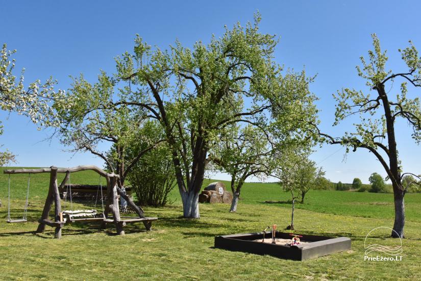 Vila Rica - countryside homestead near Druskininkai - 51