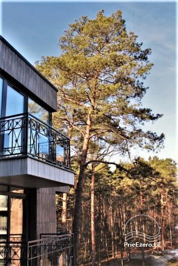 Cozy apartments Sunny forest in Druskininkai, in a unique new home - 3