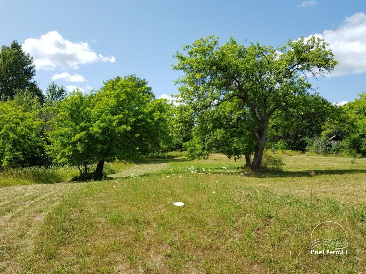 Family homestead 40km from capital Vilnius, near the lake - 11