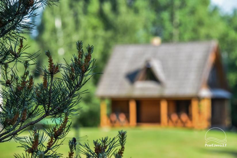 Log house - villa and sauna near Lake Auslo in Zarasai district - homestead AUSLA - 55