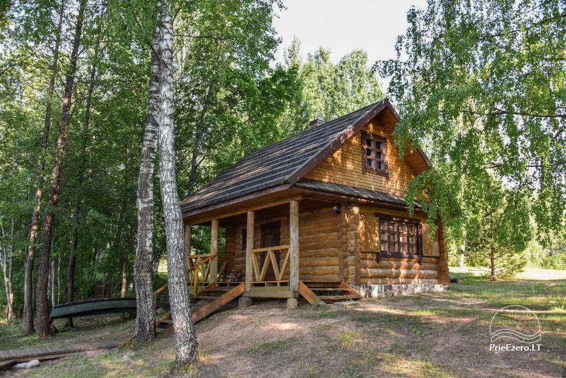 Log house - villa and sauna near Lake Auslo in Zarasai district - homestead AUSLA - 44