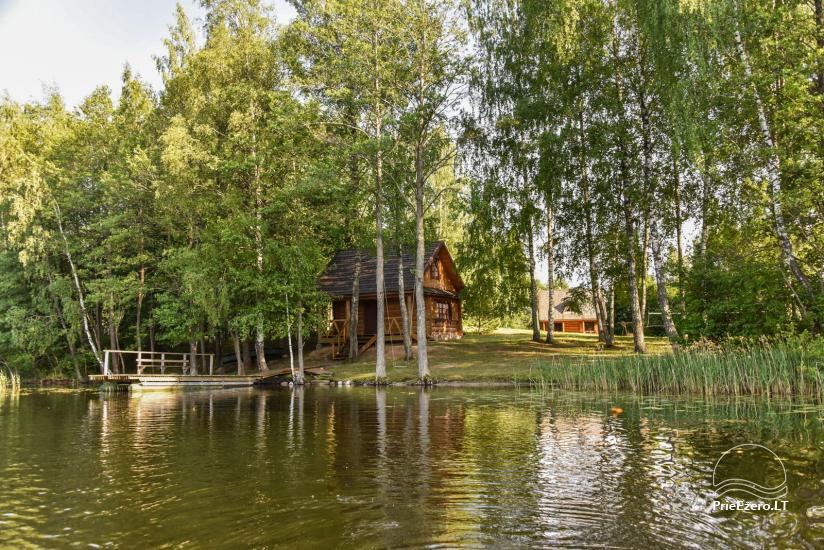 Log house - villa and sauna near Lake Auslo in Zarasai district - homestead AUSLA - 21
