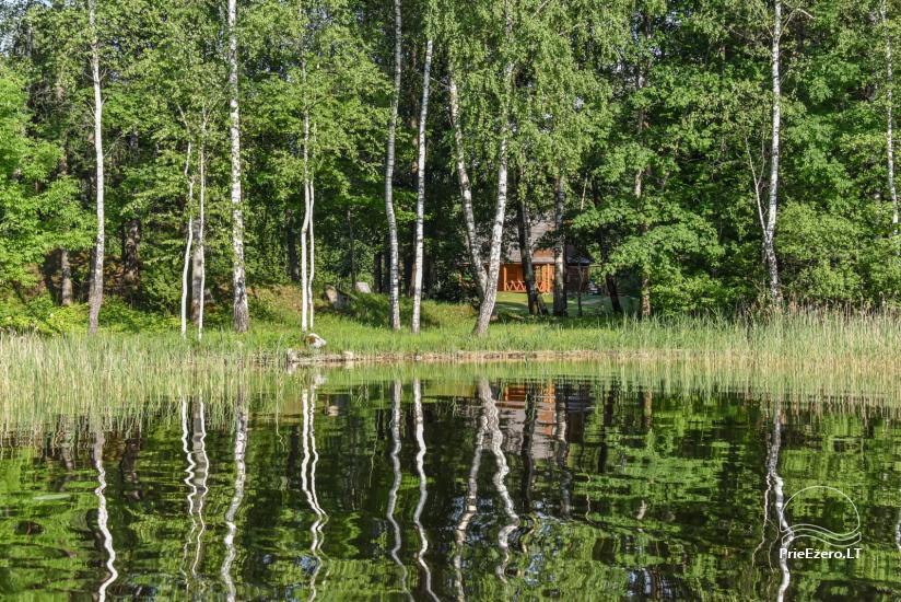 Log house - villa and sauna near Lake Auslo in Zarasai district - homestead AUSLA - 52
