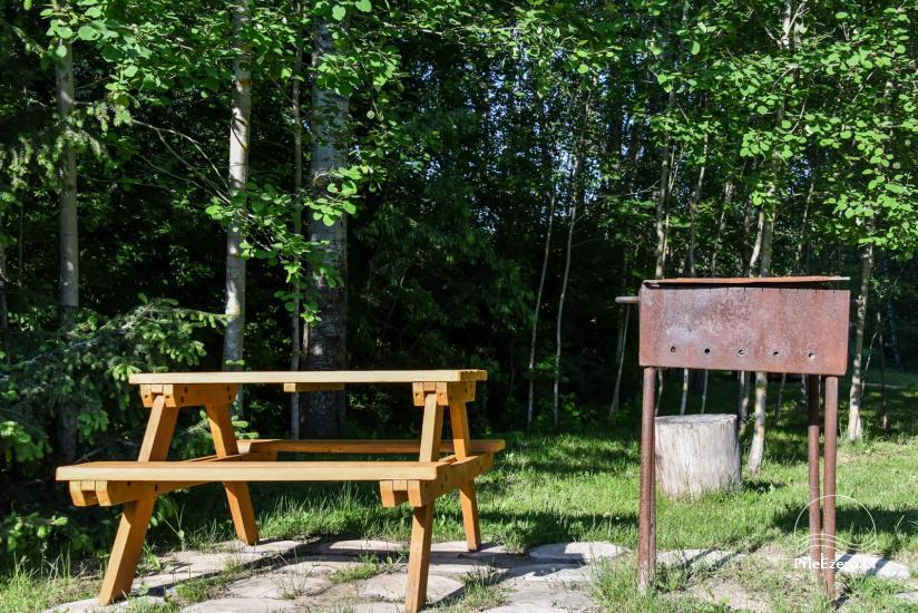 Log house - villa and sauna near Lake Auslo in Zarasai district - homestead AUSLA - 50