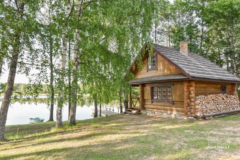 Log house - villa and sauna near Lake Auslo in Zarasai district - homestead AUSLA - 43