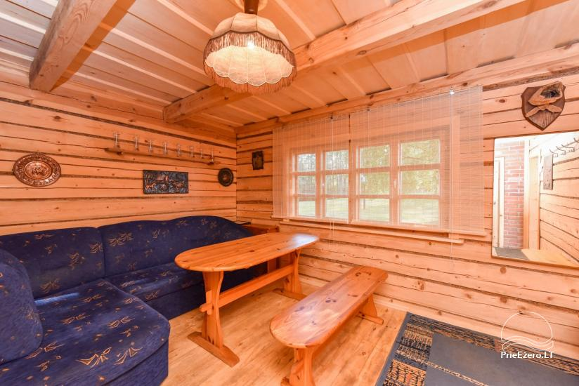 Log house - villa and sauna near Lake Auslo in Zarasai district - homestead AUSLA - 46