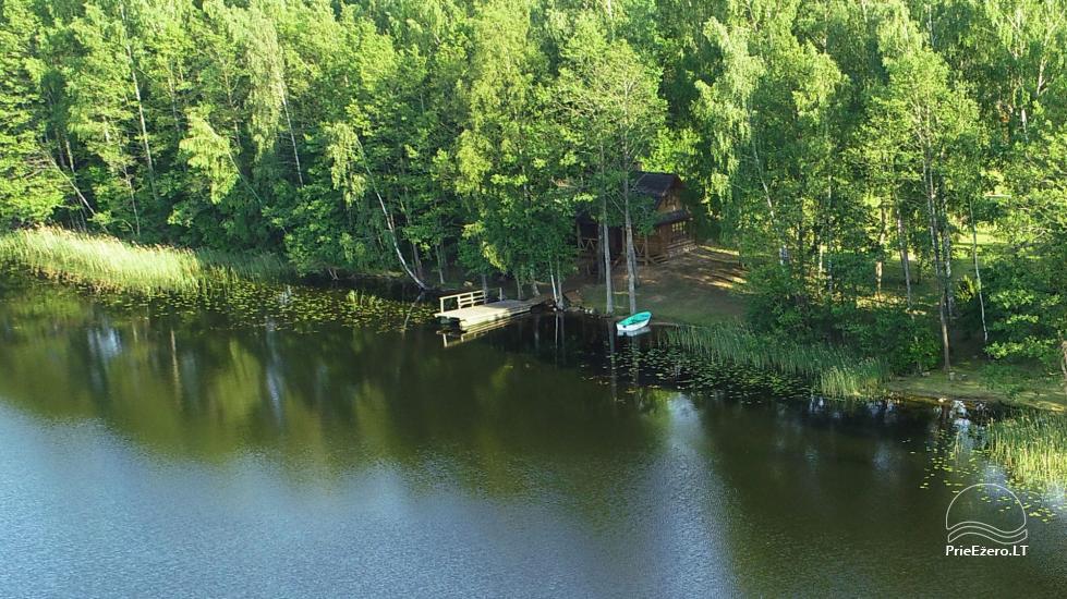 Log house - villa and sauna near Lake Auslo in Zarasai district - homestead AUSLA - 40