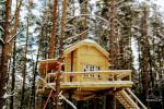 Tree house on the shore of the lake in Lithuania - 4