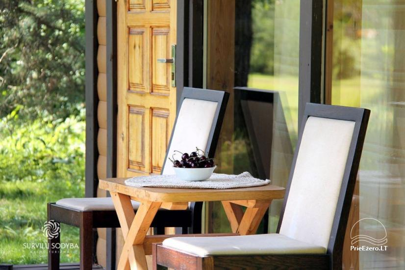 Villa for rest in Jonavos area - 3