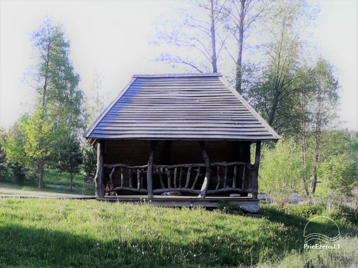 Villa for rest in Jonavos area - 7