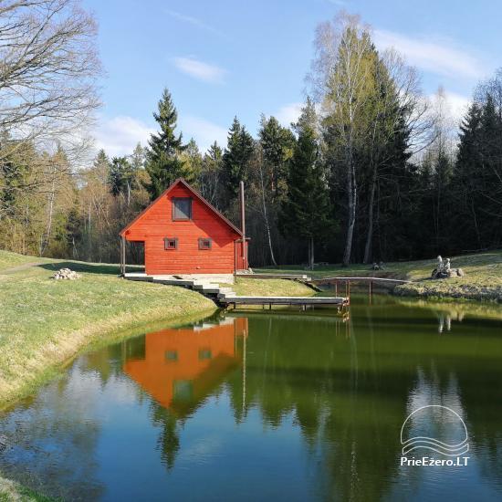 Сельская усадьба в Алитусской области Под дубом в Литве - 9