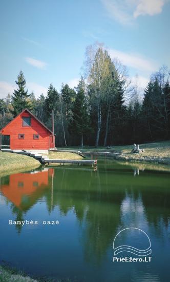Сельская усадьба в Алитусской области Под дубом в Литве - 1