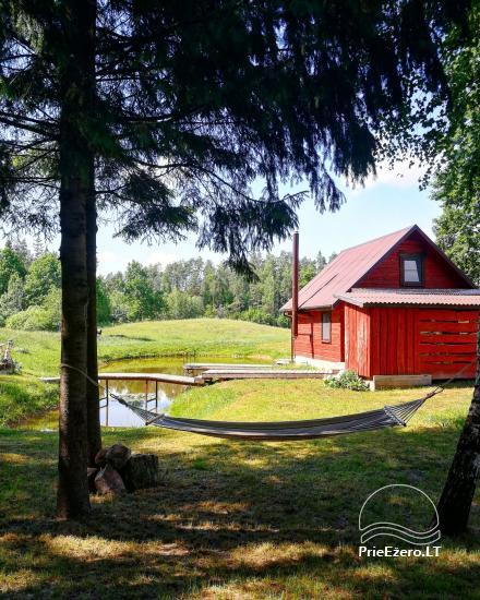 Сельская усадьба в Алитусской области Под дубом в Литве - 3