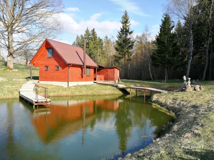 Сельская усадьба в Алитусской области Под дубом в Литве - 4
