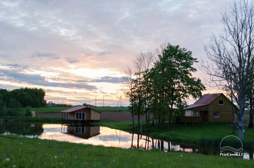 Homestead in Jurbarkas district Raudonės Fazenda - 23