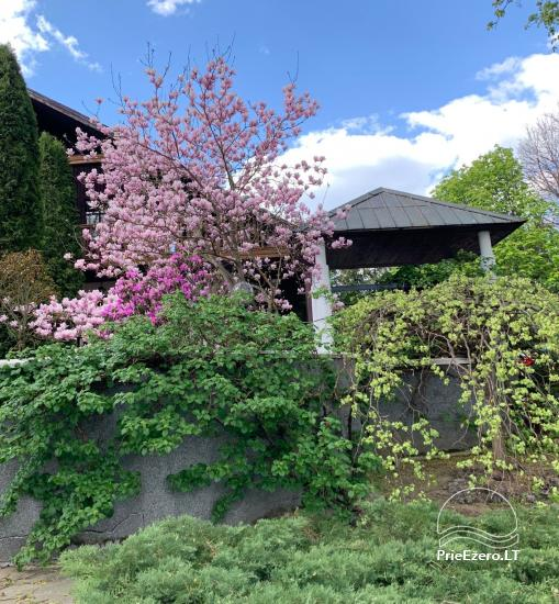 MARGIO Villa in Trakai region near the lake - 29