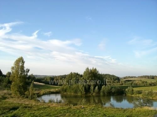 Kaziulio homestead in Kaisiadoriu district near the lake - 2