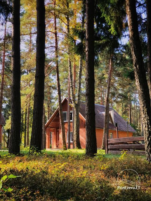 Countryside homestead for rent near the lake in Lithuania - 8