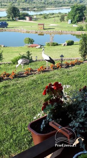 Summer campsite ''Camp Genys'' near the river Nemunas - 3