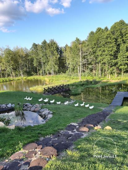 Countryside homestead near Ilmedas lake, in Lithuania, Moletai region - 31
