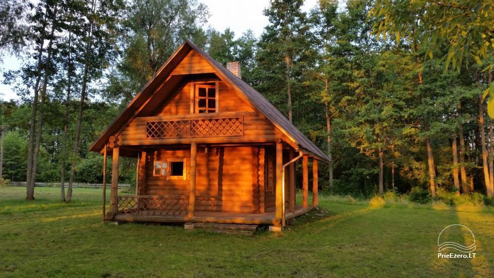 Countryside homestead Vazajaus on the lakeshore - 2