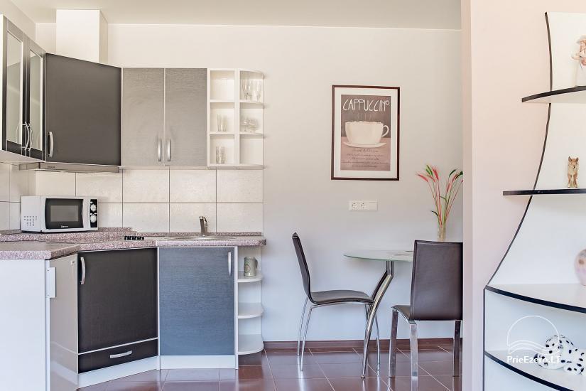 SR Apartments - Druskininkai - apartments for rent in Druskininkai - 6