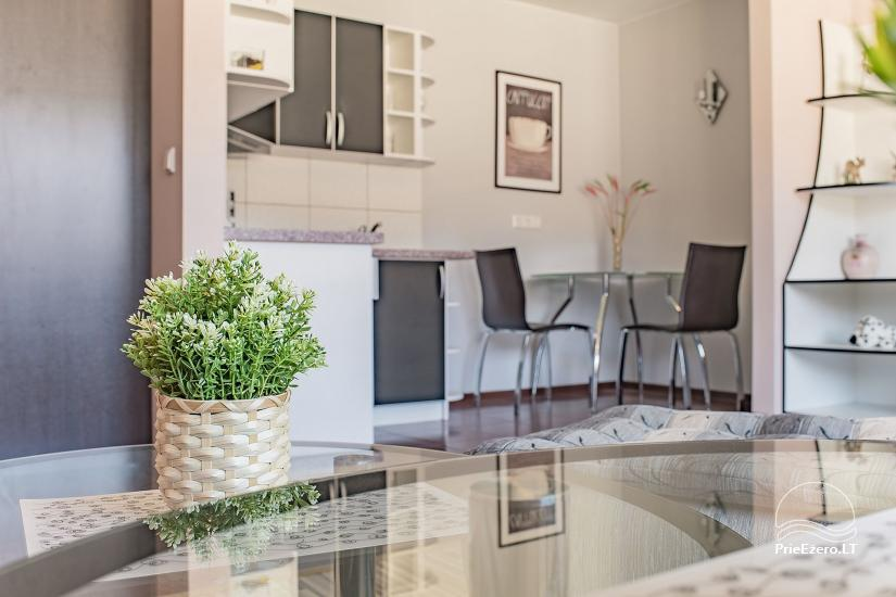 SR Apartments - Druskininkai - Wohnung zur Miete in Druskininkai - 7