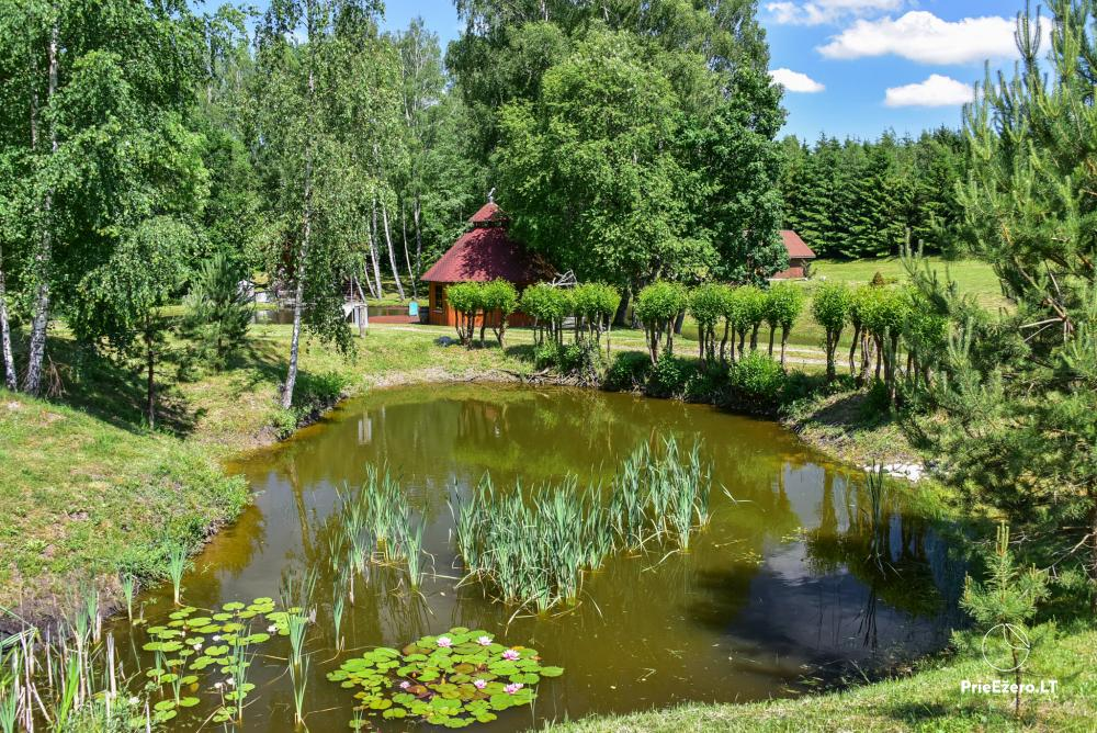 Countryside homestead in Kelme region A pearl of Voverishke - 4