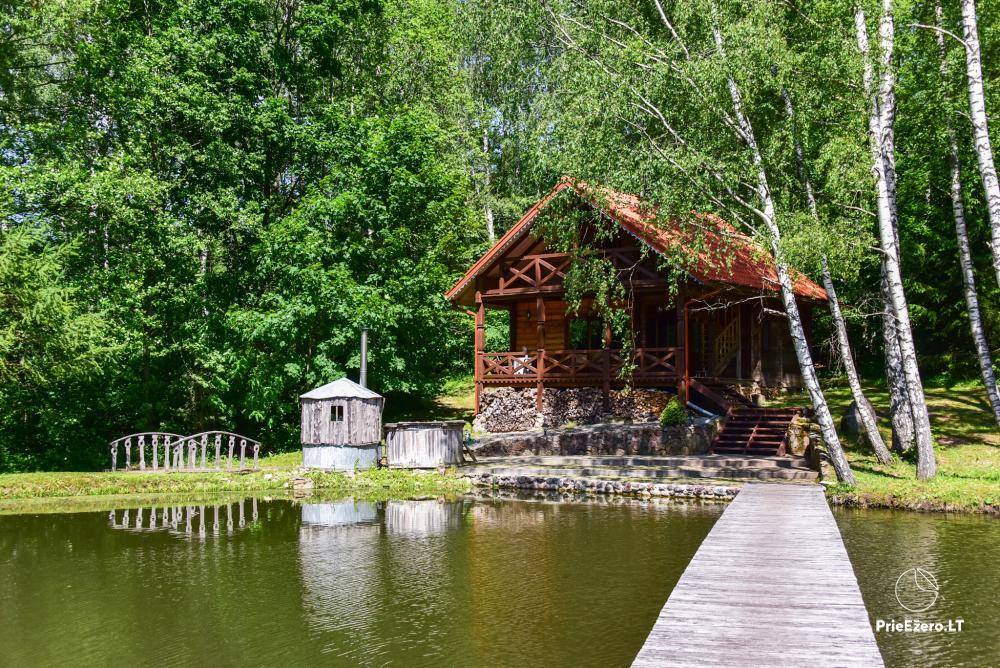 Countryside homestead in Kelme region A pearl of Voverishke - 14