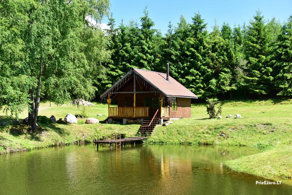 Countryside homestead in Kelme region A pearl of Voverishke - 30