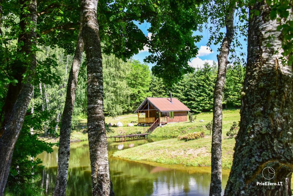 Countryside homestead in Kelme region A pearl of Voverishke - 29