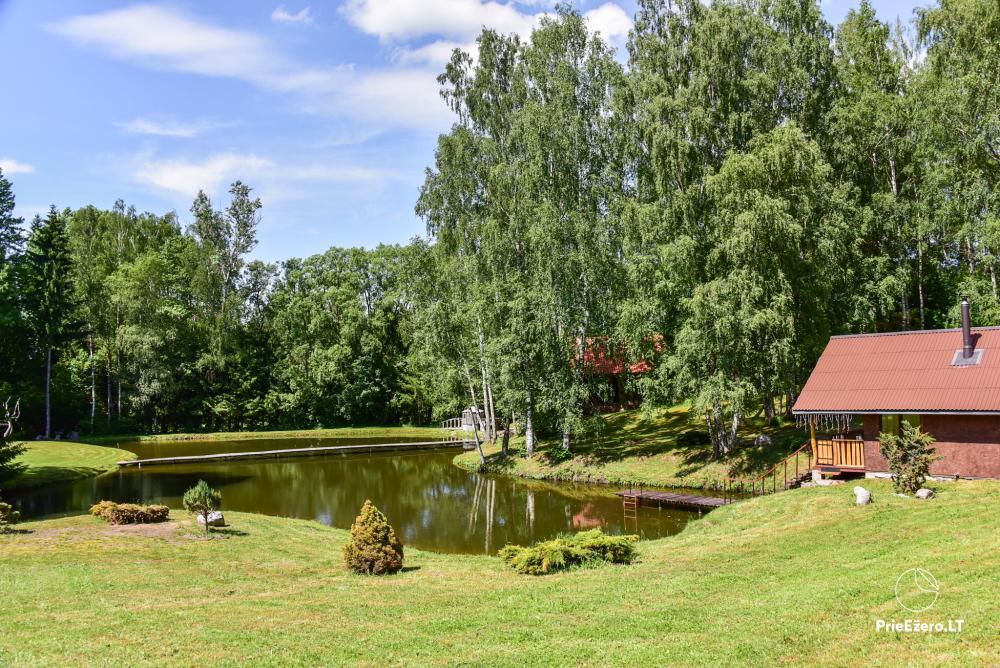 Countryside homestead in Kelme region A pearl of Voverishke - 32