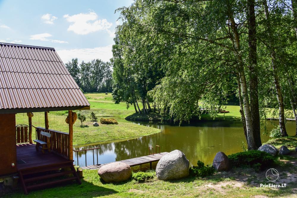 Countryside homestead in Kelme region A pearl of Voverishke - 31
